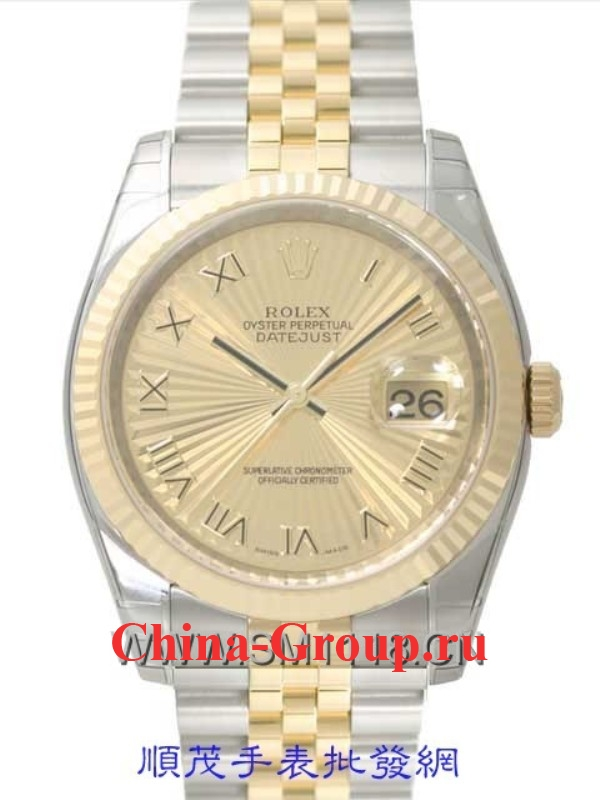 Часы Rolex Oyster Perpetual Datejust Steel & Gold 00077